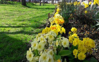 Filton Community Garden up for award